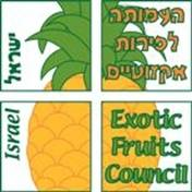 Israel Exotic Fruit LOGO